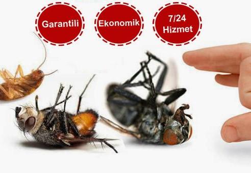 Hamam Böceğine Çare